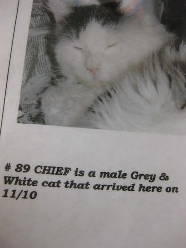 89 Chief