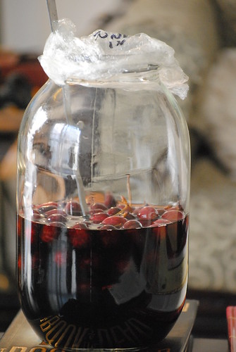 image-pickled-cherries