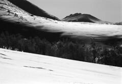 Tree zone ends (threepinner) Tags: winter snow tree japan canon hokkaido kodak   hq biei f28 135mm microfilm hokkaidou  selfdeveloped t50 northernjapan nfd imagelink mtbiei  mountainsnaps  taisetsunationalpark
