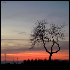 Into the zones of blood (Shima Hitotsu) Tags: trees winter sunset sky italy rural landscape twilight darkness friuli 10faves 35faves abigfave platinumheartaward