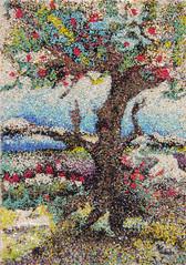 an eloquent tree