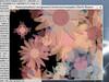cluttermm-flowers