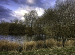 England: Northamptonshire, Backwater (Tim Blessed) Tags: trees sky nature water clouds reeds landscapes countryside scenery wetlands ponds lifeasiseeit singlerawtonemapped inspiredbyhim