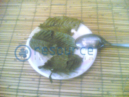 Kratom  Dried picture photo bild