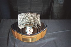 "George Halas Trophy • <a style=""font-size:0.8em;"" href=""http://www.flickr.com/photos/23560286@N02/2512197759/"" target=""_blank"">View on Flickr</a>"
