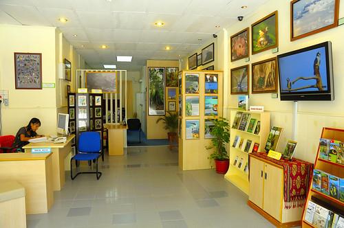 Cede Gallery