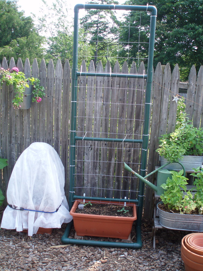 PVC and wire trellis