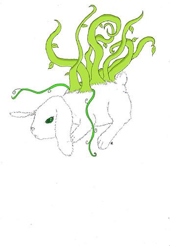Naturabbit