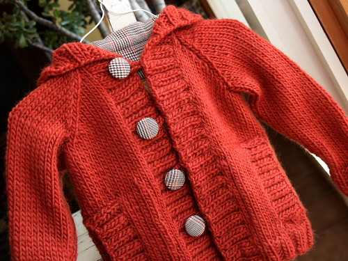 Knit Child's Raglan Cardigan by Lion Brand Yarn