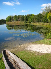 now just with carved canoe (sassnasty) Tags: park lake illinois suburban south katherine hills southern catherine suburbs palos