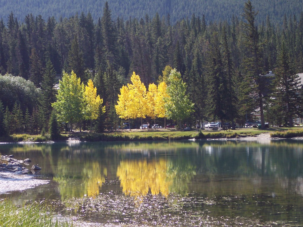 Indian Summer 2008, Rocky Mountains, Alberta, Canada