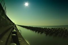 Shizuoka Moonlight