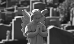 Stone Angel (Kevin Tataryn) Tags: monument cemetery stone angel nikon montreal cotedesneiges 18135 d40