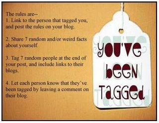 7 random facts tag