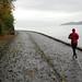 Running - Asphalt