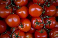[フリー画像] [食べ物] [野菜] [トマト] [ミニトマト] [赤色/レッド]      [フリー素材]