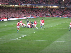 Wales - South Africa Rugby Match