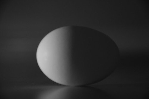 Egg reflection