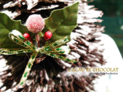 cacaoetchocolat