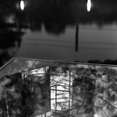 oasis. (F_blue) Tags: tokyo fuji hasselblad 500cm neopan100acros planart 善福寺公園 トロールの森 c8028 zempukujipark fblue2008 丸山芳子 yoshikomaruyama trollsinthepark2008