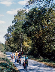 03.11 - Quiet back road, Elkton-Grottoes area, en-route Luray-Waynesboro (velodenz) Tags: velodenz nikon cycletouring bicycletouring biketouring 1991 contax 139 coolscan lumbers ctc cycliststouringclub 5photosaday virginia westvirginia leagueofamericanwheelmen law holiday vacation vacances envacances usa unitedstatesofamerica northamerica appalachianmountains appalachia blueridge analogue analog ctcpeople bikeculture photograph photo image picture travel trip journey voyage viaje reisen favourite favorite fave favourited favorited faved favorit cyclotourisme cicloturismo landscape countryside rodadas 35mm landschaft paysage paisaje paesaggio landschap