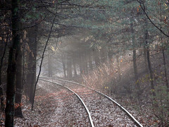 abandoned railroad (MasterGeorge) Tags: road railroad abandoned train woods tracks rail trail
