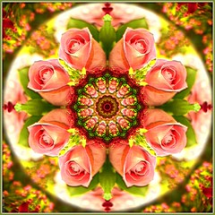 Kaleidoscope Rose (San Valentn Classic) 3109-1 (Lucy Nieto) Tags: abstract colors rose mxico digital catchycolors tile mexico patterns digitalart rosa kaleidoscope colores symmetry textures computerart artedigital texturas kaleidoscopes caleidoscopio patrones simetra caleidoscope kaleider digitalabstract kaleidoscopefun arteabstracto colourartaward artlegacy kaleidoscopesonly photocomputerart