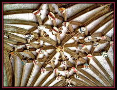 Canterbury Cathedral (meer cottage) Tags: wood roof england church kent cathedral canterbury beams shields