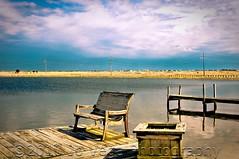 Mastic Beach, NY (jovegaphotography.com) Tags: county new york beach heron water docks fence bench island photography bay geese suffolk long south great ducks jo goose vega mastic jovegaphotography