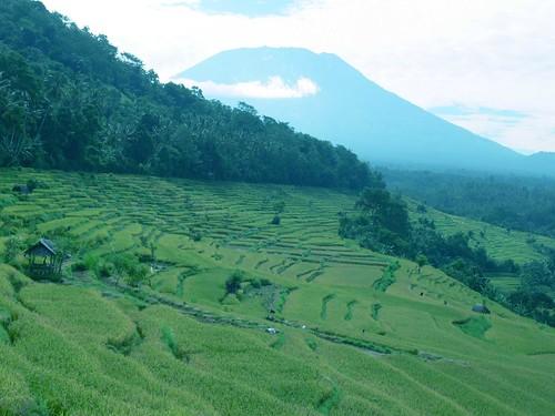 Kestala, Gumang and Tenganan Trekking