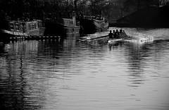 Lea river (Martino's doodles) Tags: park blackandwhite london delete10 club river delete9 boats delete5 delete2 boat untagged delete6 delete7 save3 delete8 delete3 save7 save8 delete delete4 save save2 row east save4 lea rowing springfield save5 olympics save6 narrow delete11