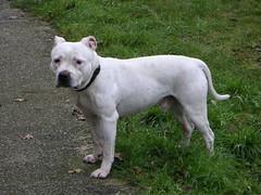 dogging oslo Stathelle