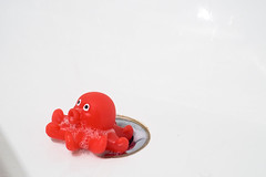 After baby's bath (Lars Plougmann) Tags: red baby toy bath drain foam octopus bathtub babytoy bathtoy epsn2216lr