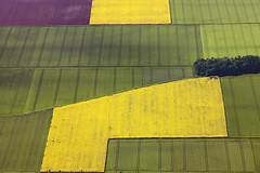 Fields (Aerial Photography) Tags: green field lines yellow by germany de bavaria graphic aerial m fields agriculture obb 7934 colourlicious aschheimlkrmnchen