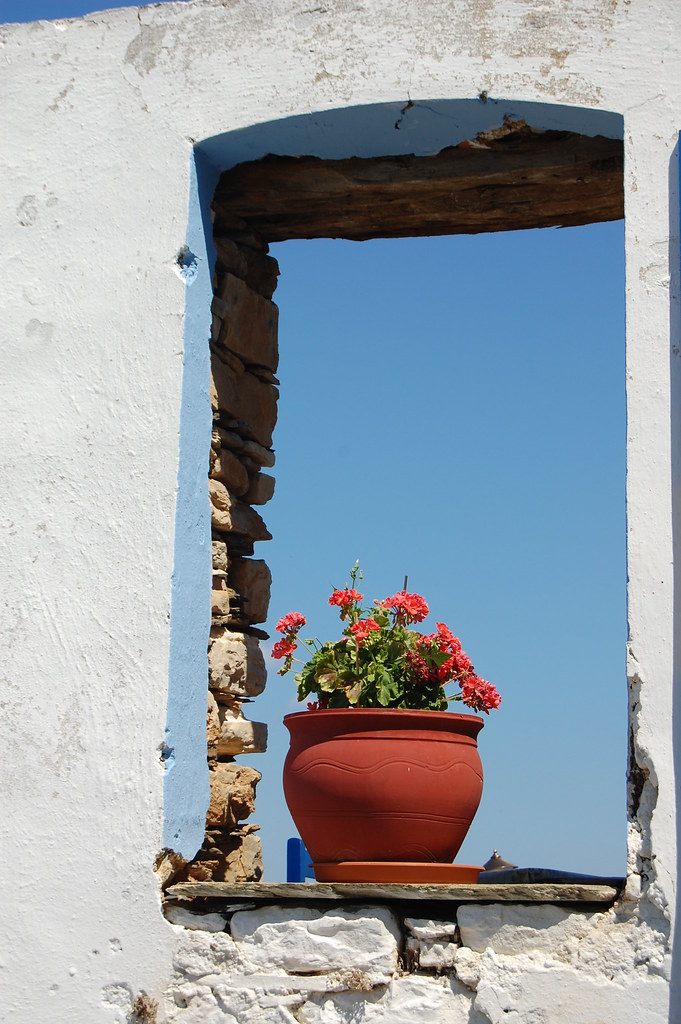 Flower pot in window frame