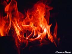 A vida  como um Fogo  - The life is like a fire (Bruno Leonardo Mendes) Tags: brazil brasil cores fire flickr power laranja vermelho orkut fuego brand feuer fogo tuli matogrosso fuoco incendie brann  eld  vivas ogie foc vatra ohe  queimadura queimadas  poweroffire    juruena grupo1a10brasil visofotogrfica brunolm13 poderdofogo slaohn siaognia