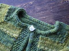 Green Tulip 2