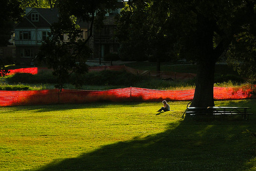 A New Christo Installation in Madison's Wingra Park?