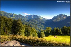 Austria - Vorarlberg (Lars Tinner) Tags: trees mountains tree alpes geotagged austria berge alm alp bume baum vorarlberg kehlegg wwwtinnersg geo:lat=47397440 031kmtokehlegginvorarlbergaustria geo:lon=9785474 httpwwwtinnersg tinnersg