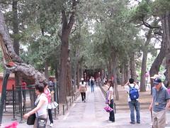 China-0202