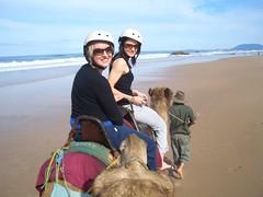 CIMG0325 (Queenbean79) Tags: beach camels portmacquarie
