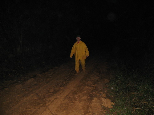 trudging the road at night
