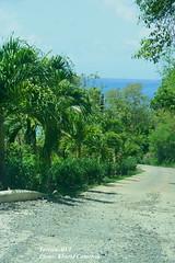 tortola long bay (loveli_one28) Tags: travel flowers st islands airport view thomas united ships virgin beaches waters british caribbean states tortola pristine