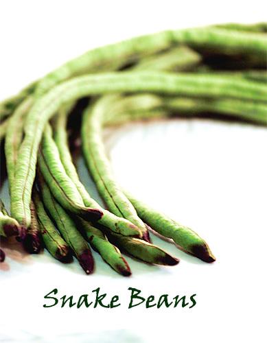 Snake Bean