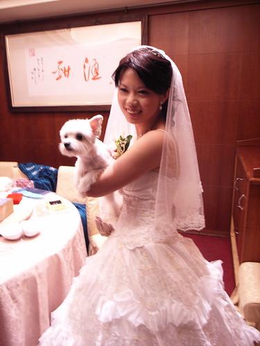 新娘跟她的愛犬:橘子(牠是母的喔)