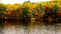 Rocky Pond (Kadance) Tags: autumn lake fall leaves pond october maine rocky foliage 4seasons onlythebestare
