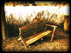 old bench (~ Pixel Passion ~) Tags: old autumn black tree broken field grass sepia germany bench deutschland mood alt sony herbst feld meadow wiese atmosphere bank hannover september frame gras 2008 holz soe baum schwarz rahmen lumber stimmung kaputt ricklingen maschsee sonydscp100 aplusphoto
