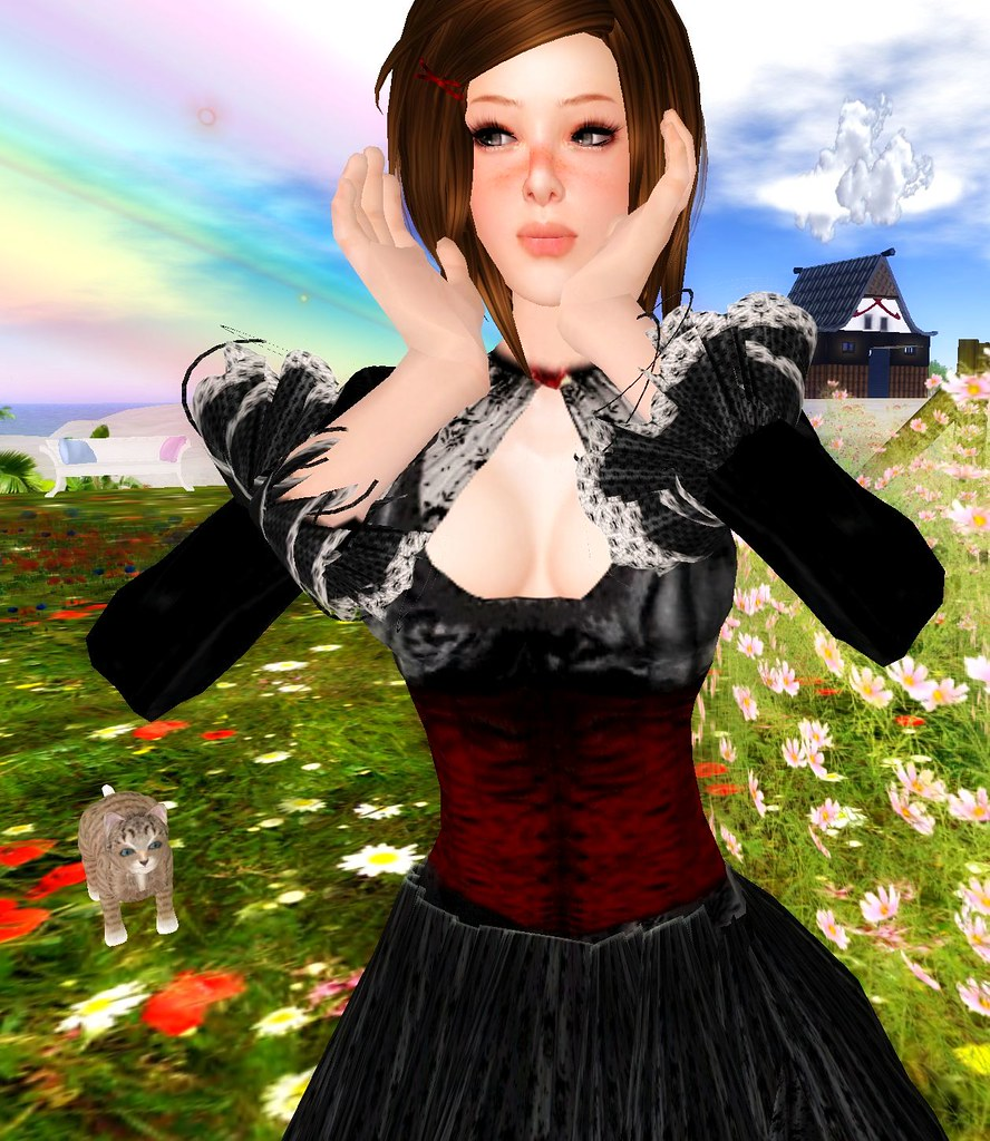 pic gotic dress 1L