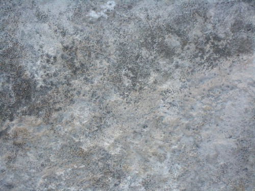SR_Rough_Texture_12