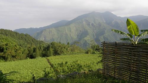 21.清晨從小陽台遠眺山景